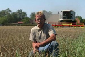 maashorstbier-oogst-gerst